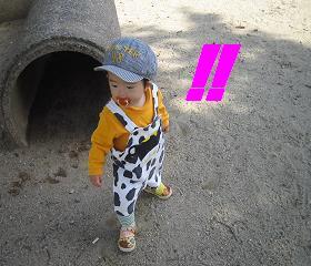 7日公園4.JPG