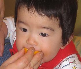 オレンジ大好き1.JPG